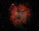 Gasnebel IC 1396 mit offenem Sternhaufen Tr 37  im Cep