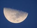 Mond-X